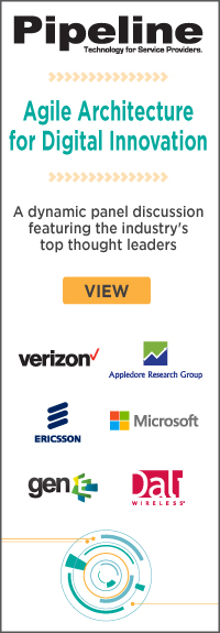 Agility Architecture for Digital Innovation - View panel discussion